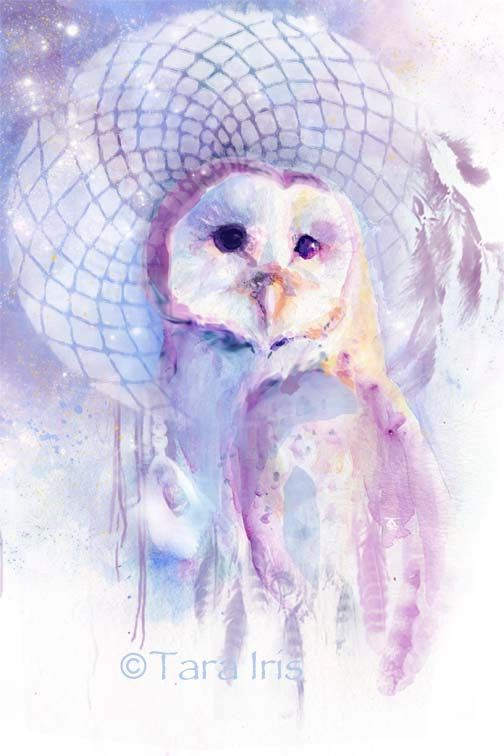 Dreamcatcher Barn Owl watercolor print by ...