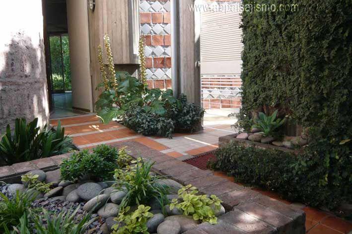 el jardin de entrada remodelado como jardin sostenible, de poca agua ,malla antihierbas ,grava.Las plantas, Pteris y ophyopogon