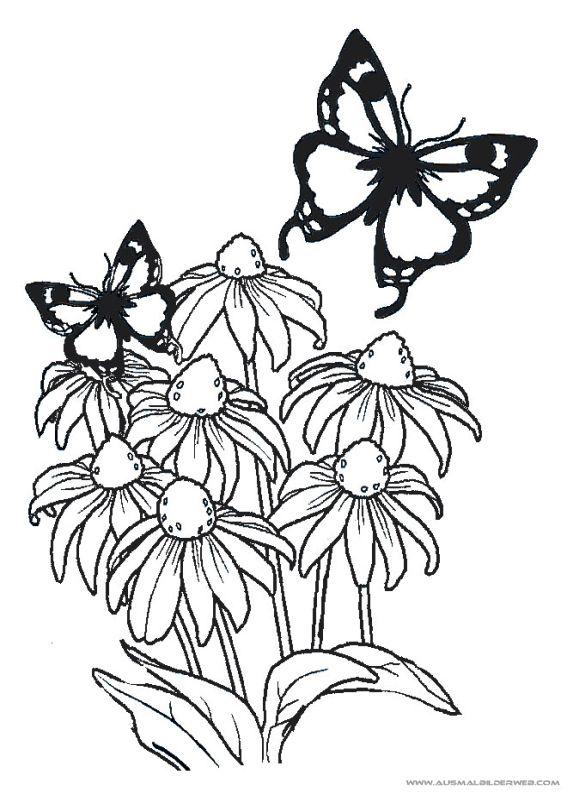 17 best Ausmalbilder Blumen images on Pinterest | Blumen ...