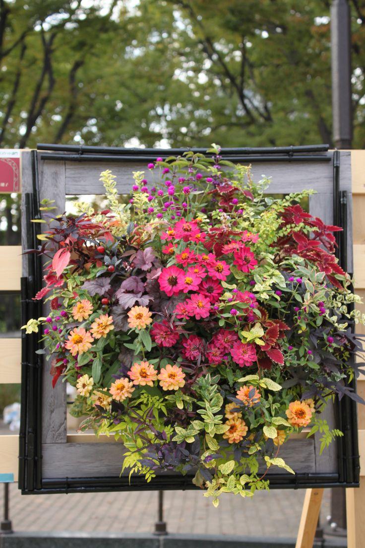 Hanging flower for Hibiya gardening show 2014 autumn