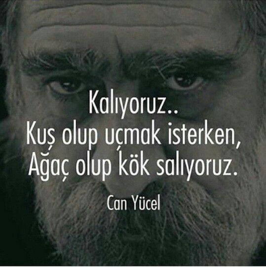 ✿༻ Can Yücel