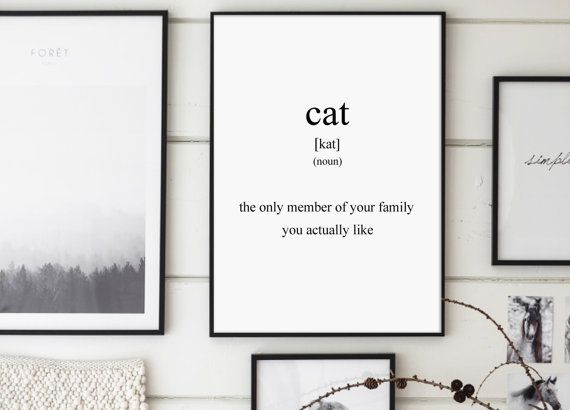 Cat Cat Definition Definitions Joke Funny by GalaDigitalPrints
