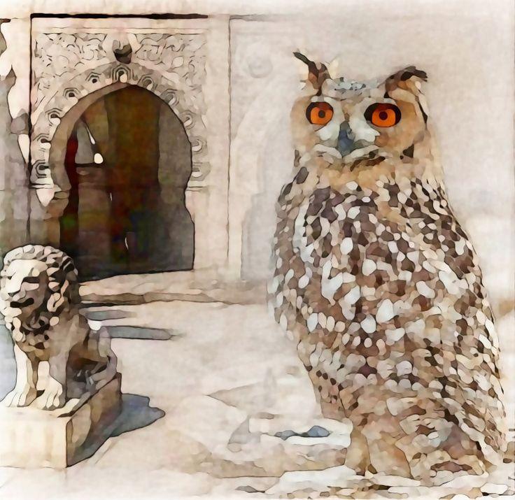 Wüstenuhu - Pharaoh Eagle Owl BELLA DONNA digital art - Hogwarts School (Owl Art)