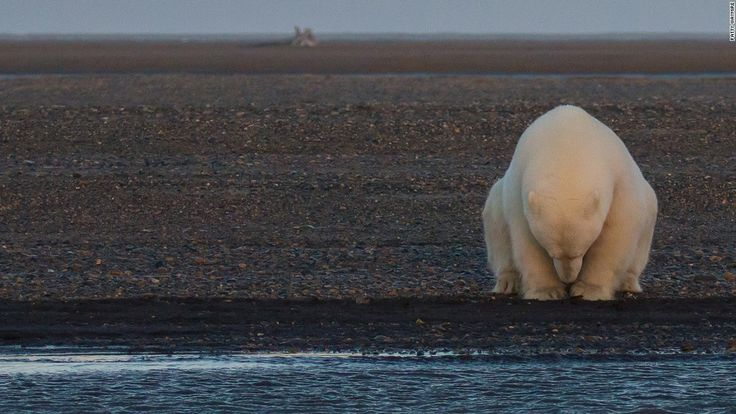 A photo exhibition is showing the effects of climate change to world leaders and climate change experts.