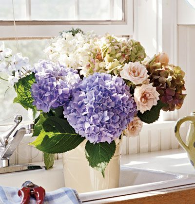 Hydrangea and rose flower arrangement. So perfect and fresh