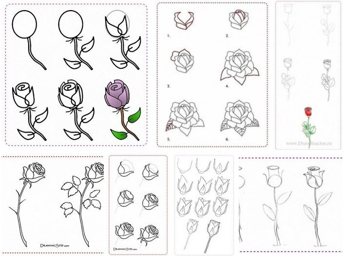 219 best cocuk cizimleri images on pinterest how to draw drawing how to draw rose flowers step by step diy tutorial instructions mightylinksfo