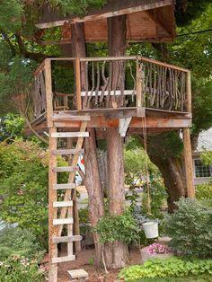 rustikales baumhaus-mit leiter-aus holz-treppen überdachte-sitzgelegenheiten