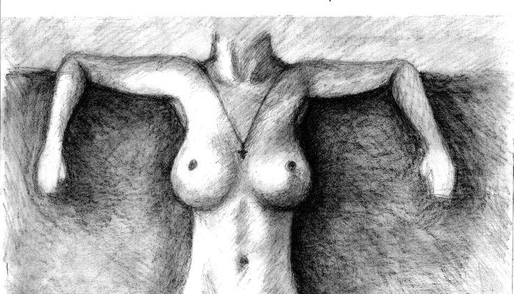 Sketchbook. body