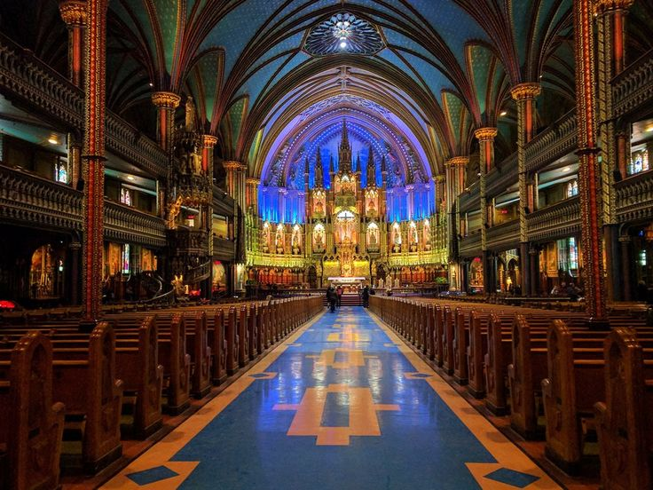 What are the top 3 reasons someone should attend University of Notre Dame?