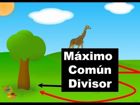 Maximo comun divisor metodo directo youtube clases for Pared de 15 ladrillo comun