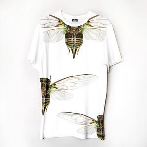 T-Shirt Cicadas
