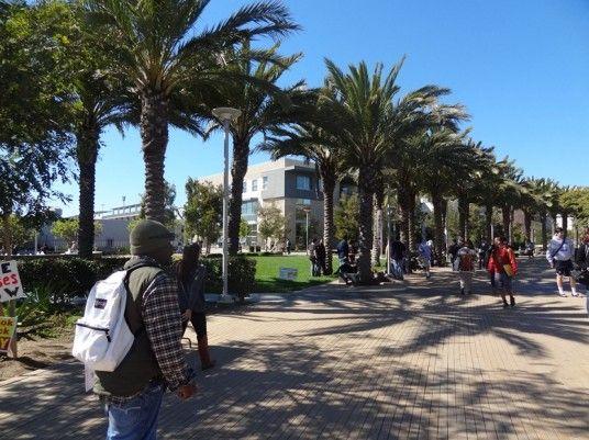 University of Santa Monica Campus