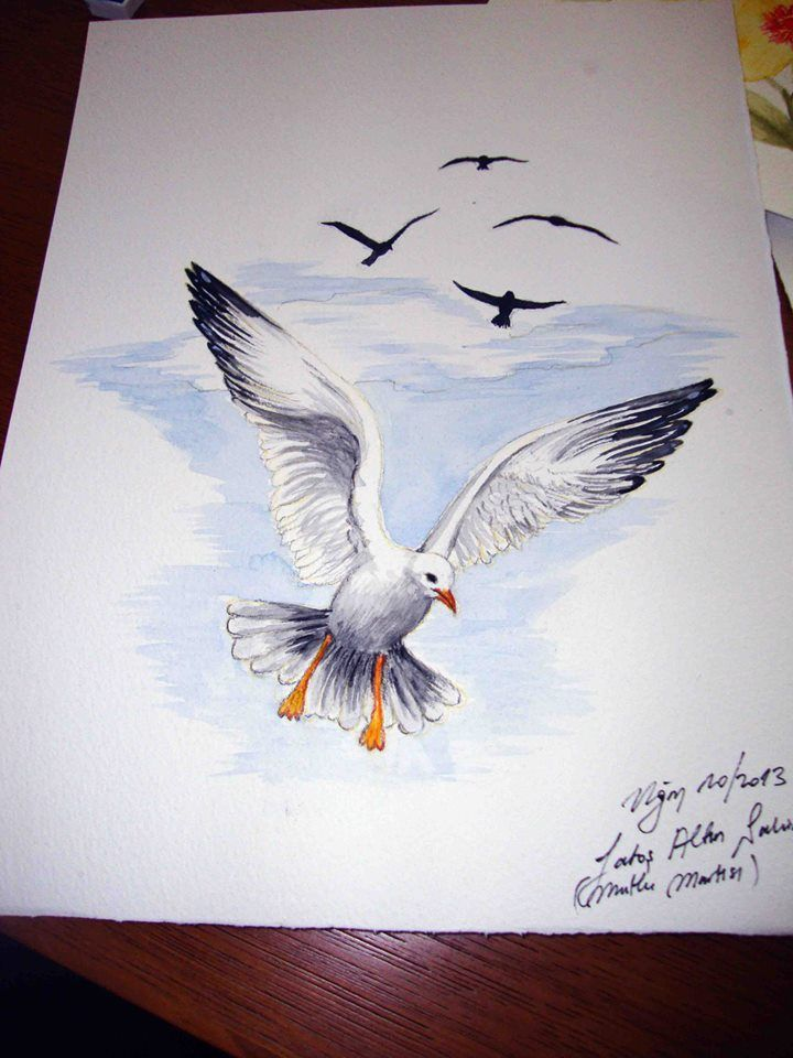 how to draw a seagull in flight