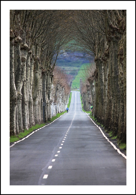 Carretera Orduña-Vitoria/Gasteiz (Bizkaia) #spain #turspain #bilbao by @Raul G. Coto