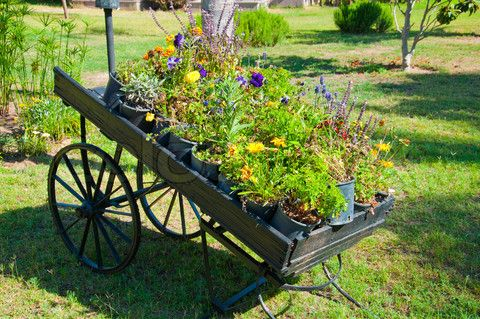 Wooden pallet truck as garden decor