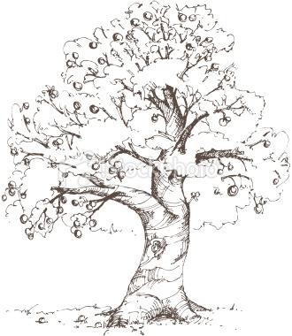 Tree Sketch Apple It Remembers Me Of Winnie The