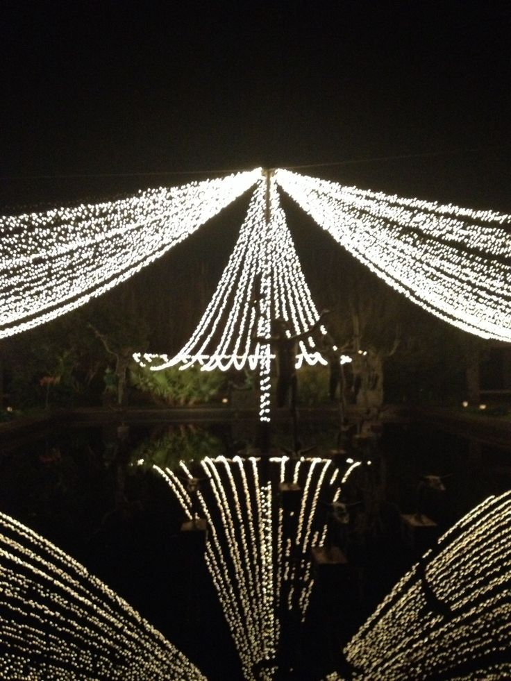 1000 Images About Top Places To See Christmas Lights On Pinterest Gardens The Oaks And Kauai