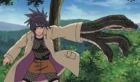 Naruto Anko Ninja Profile Guide By: Ywan - http://freetoplaymmorpgs.com/naruto-online/naruto-anko-ninja-profile-guide-ywan