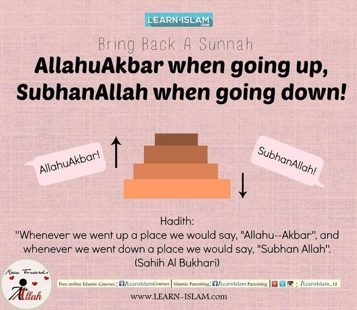 Al-Bukhari narrated in his Saheeh that Jabir ibn 'Abd-Allah (may Allah be pleased with him) said: When we went up we would say takbeer (Allahu Akbar) and when we went down we would say tasbeeh (Subhan Allah). #Islam #Quran #Sunnah #Hadeeth #Hadith #Muslim #Aqeedah #Ummah #Muslimah #Hijad #Beard #Niqab #Niqabi #Niqabis #Deen #Dawah #Tawheed #LearnIslam #ForgottenSunnah #ReviveaSunnah #AllahuAkbar