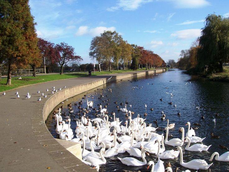 wellingborough england | Wellingborough Embankment