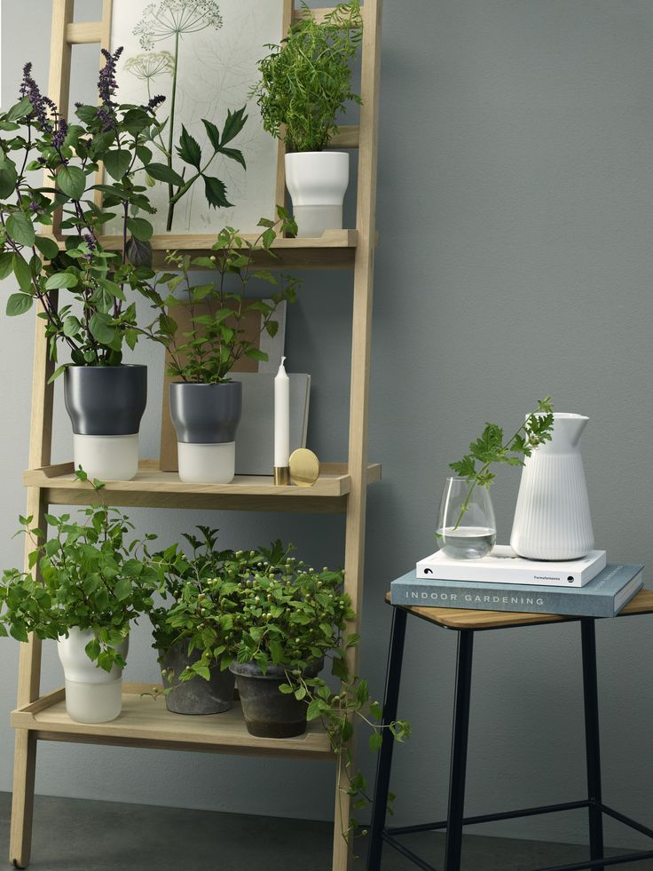Selfwatering pots by Eva Solo