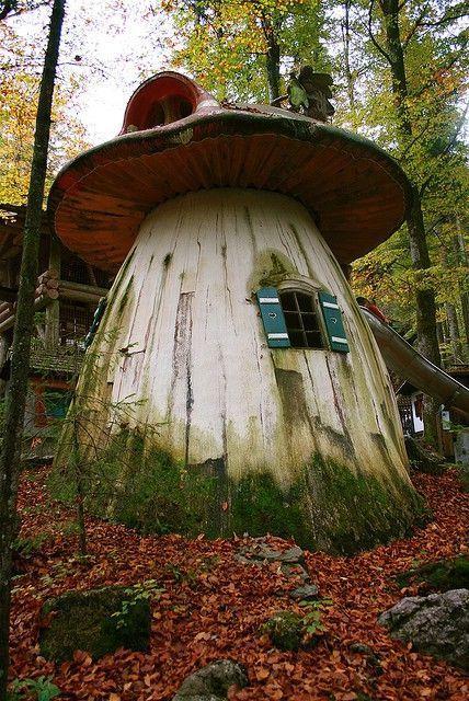 Beautiful Mushroom House