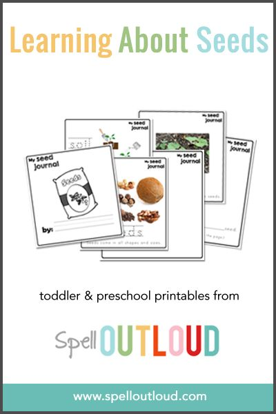 62 best Gardening Preschool images on Pinterest | Day care ...