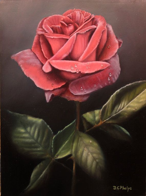 rose flower painting, red rose painting, flower artwork, rose oil painting, realism
