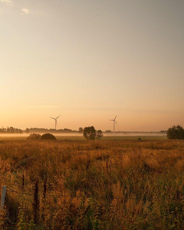The west Sweden plains @okottslig