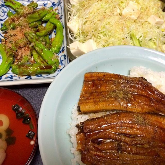 ヤッターーー!うなぎが乗ってるーー! #夕飯 - 11件のもぐもぐ - お吸物、シシトウ炒め、豆腐サラダ(リケンのノンオイル塩ドレッシングで)、うな丼 by ms903