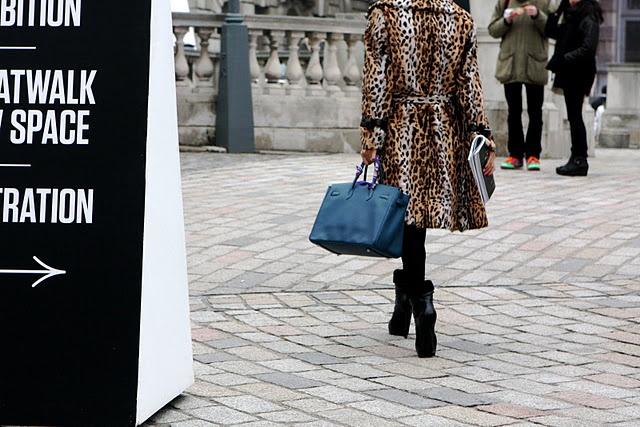 FashionWandering: leopard print and hermes