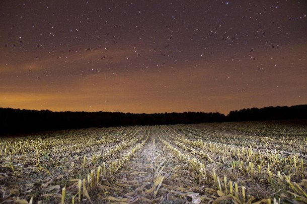 10 Best Agriculture Pictures of the Month – March 18th to April 16th, 2013 Freshly harvested corn field – The Fab Web