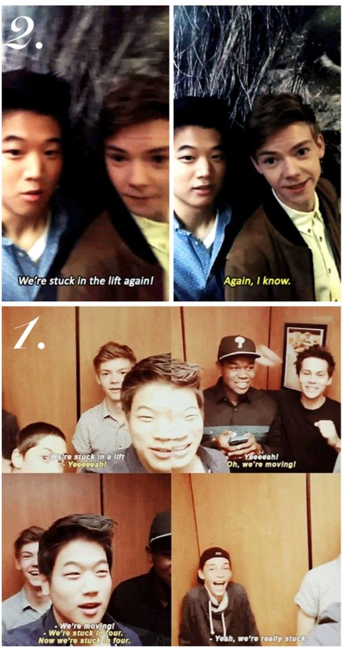 This happens to the maze runner cast a lot