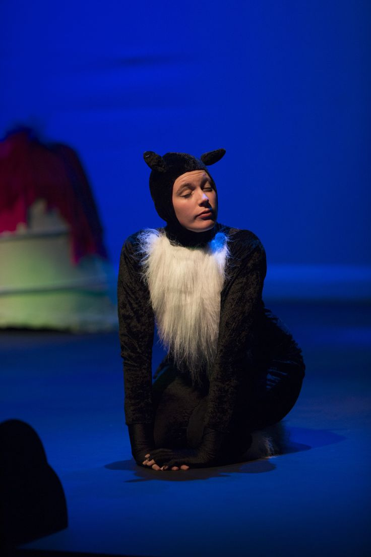 The Owl and the Pussy-Cat, Tim Bray Productions, Pumphouse Theatre, Takapuna, Auckland, New Zealand, 2014