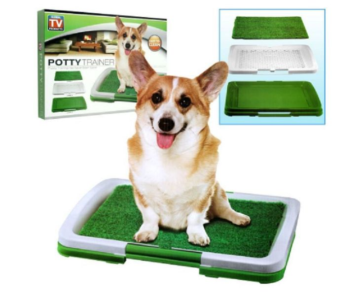 Dog Puppy Potty Trainer Indoor Training Grass Patch Pad Toilet Mat & Tray System #TotalVision