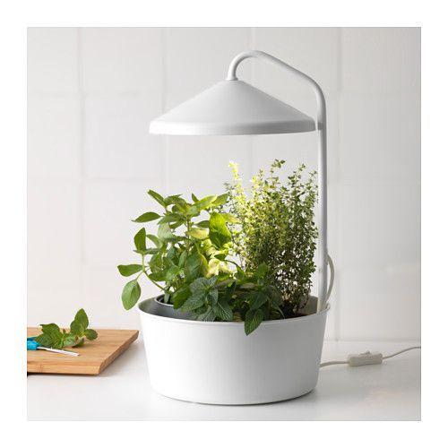BITTERGURKA Pflanzenhalter + LED-Pflanzenlampe  - IKEA