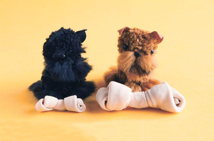 1000 Ideas About Pom Pom Puppies On Pinterest Pom Pom