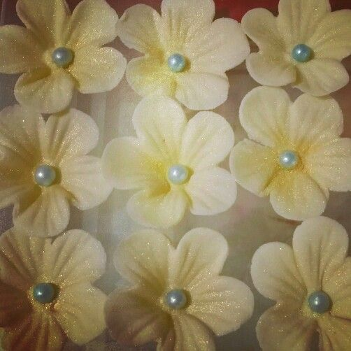 Fondont blossoms