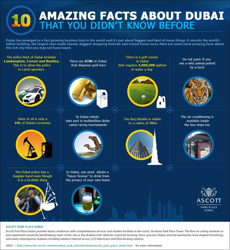 Dubai is a fast growing business hub in the Gulf region and expresses the true meaning of modern lifestyles and luxury living. There are many iconic developments in Dubai and Ascott Park Place Dubai is located in close proximity to many important landmarks.