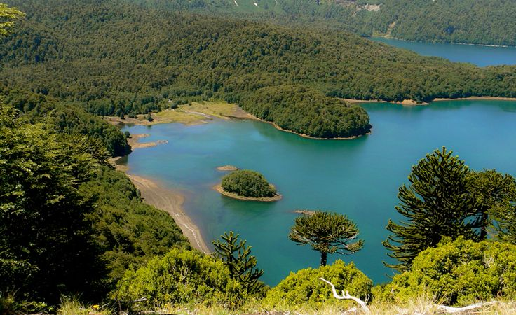 Conguillío National Park