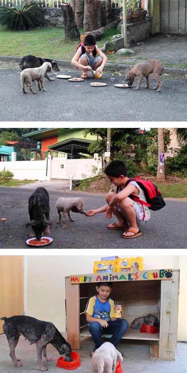 Kendi garajlarında sokak köpekleri için barınak inşa edip onlara bakan bu 9 yaşındaki pırlanta kalpli çocuk.