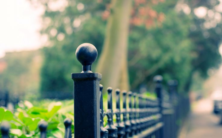 Macro Iron Fence Trees   Macro Iron Fence Trees is an HD desktop wallpaper posted in our free image collection of nature wallpapers. You can download Macro Iron Fence Trees hi...