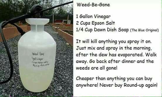 Homemade Weed spray