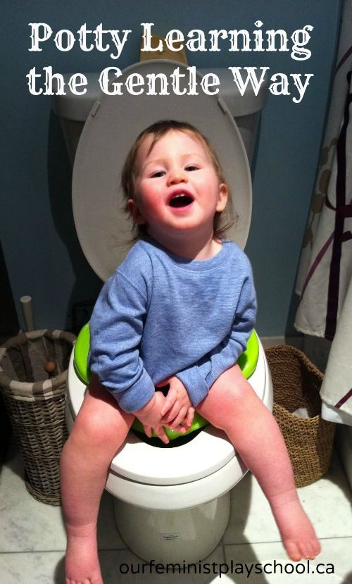how to potty train my two year old