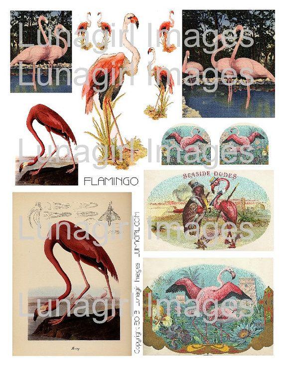 FLAMINGO digital collage sheet pink flamingos tropical by Lunagirl (Craft Supplies & Tools, Scrapbooking Supplies, Scrapbooking Clip Art, art, collage, mixed media, altered, assemblage, ephemera, digital, paper, card, tag, shabby, deco, beach)