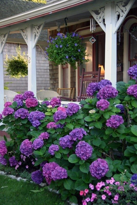 399 Best Images About My Dream Yard On Pinterest
