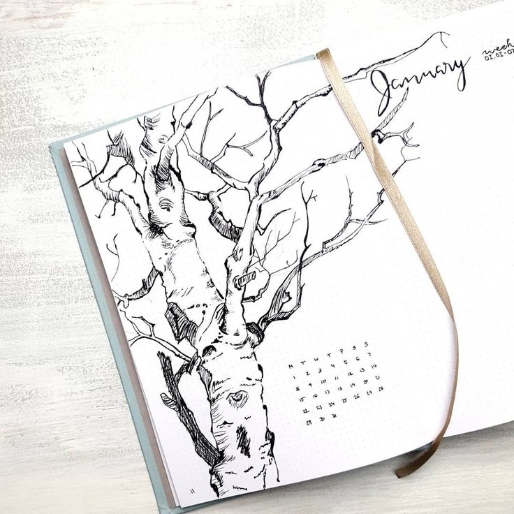Bullet journal monthly cover page, tree drawing, outdoor drawing, Winter drawing. | @moenchens.planning