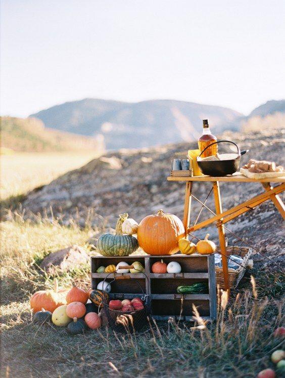 65 Amazing Fall Pumpkins Wedding Decor Ideas…