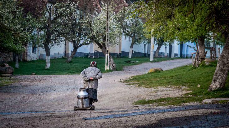 Quaint countryside in Romania - Viscri village