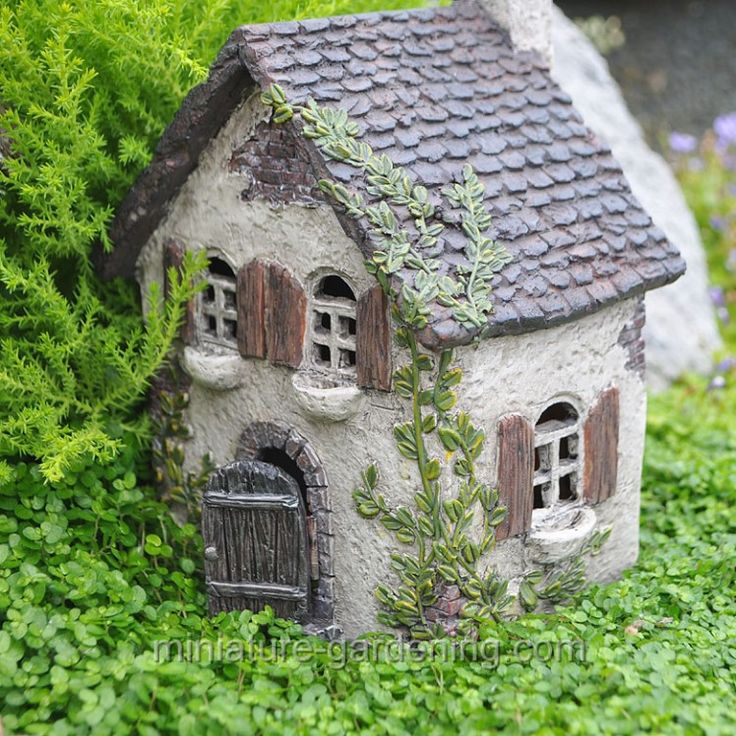 House Landscape Images: Where To Buy Miniature And Fairy Garden